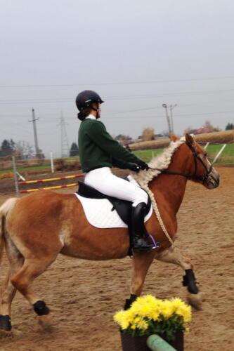 7Ranczorelax-hubertus-leszcze-leczyca-konie