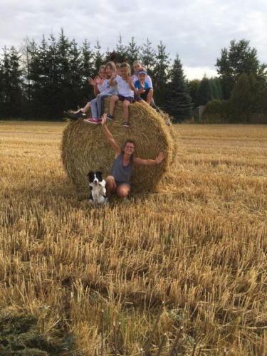 wydarzenia letnie obozy konne ranczo relax