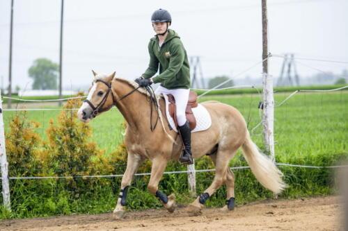 41ranczorelax-lescze-konie-zawody-jezdzieckie-2021