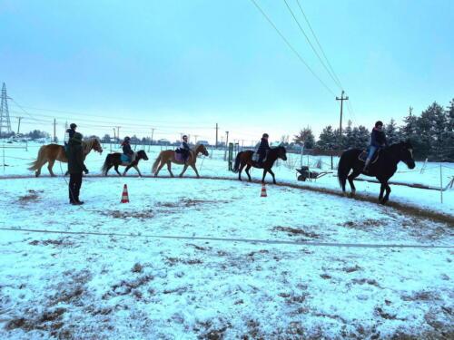 2zimowe-obozy-konne-ranczo-relax